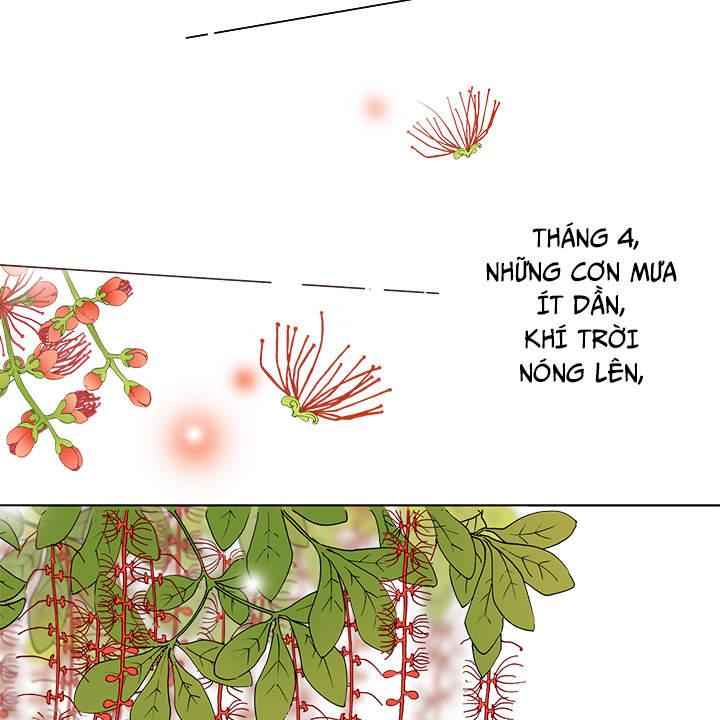 Chương 33 - 11