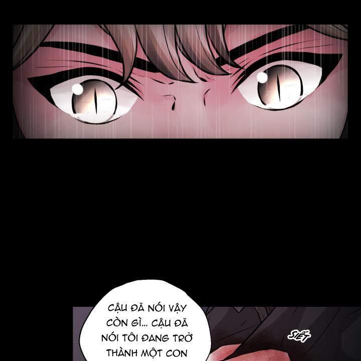 Chương 29 - 33