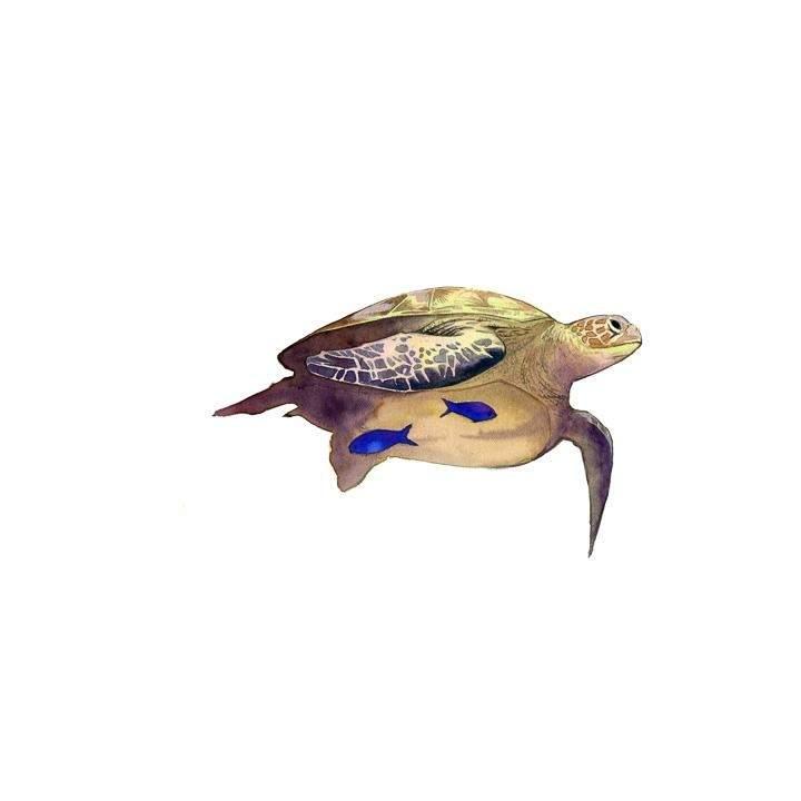 Logbook - Nhật Ký Thợ Lặn - Chương 34 - 49