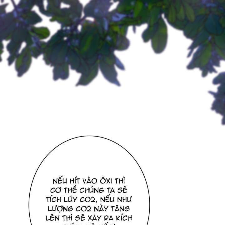 Logbook - Nhật Ký Thợ Lặn - Chương 58 - 49