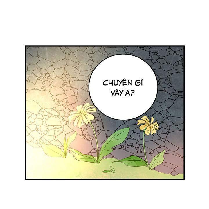 Chương 14 - 16